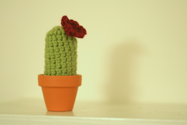 crochet cactus with flower