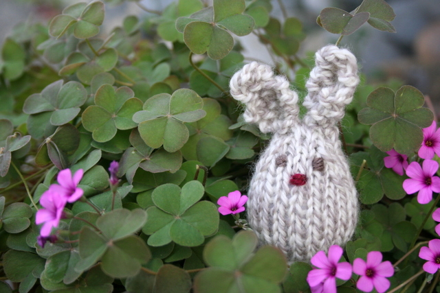 knit bunny