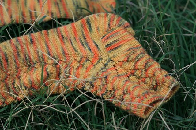 salis socks